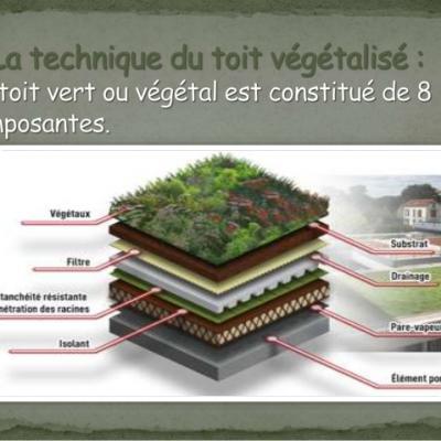 Toiture vegetalise construction